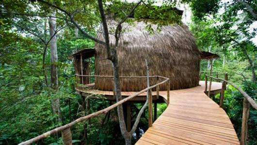 Odzala Wilderness Camps REPUBLIC OF CONGO, AFRICA